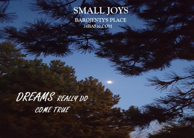 SMALL JOYS 4